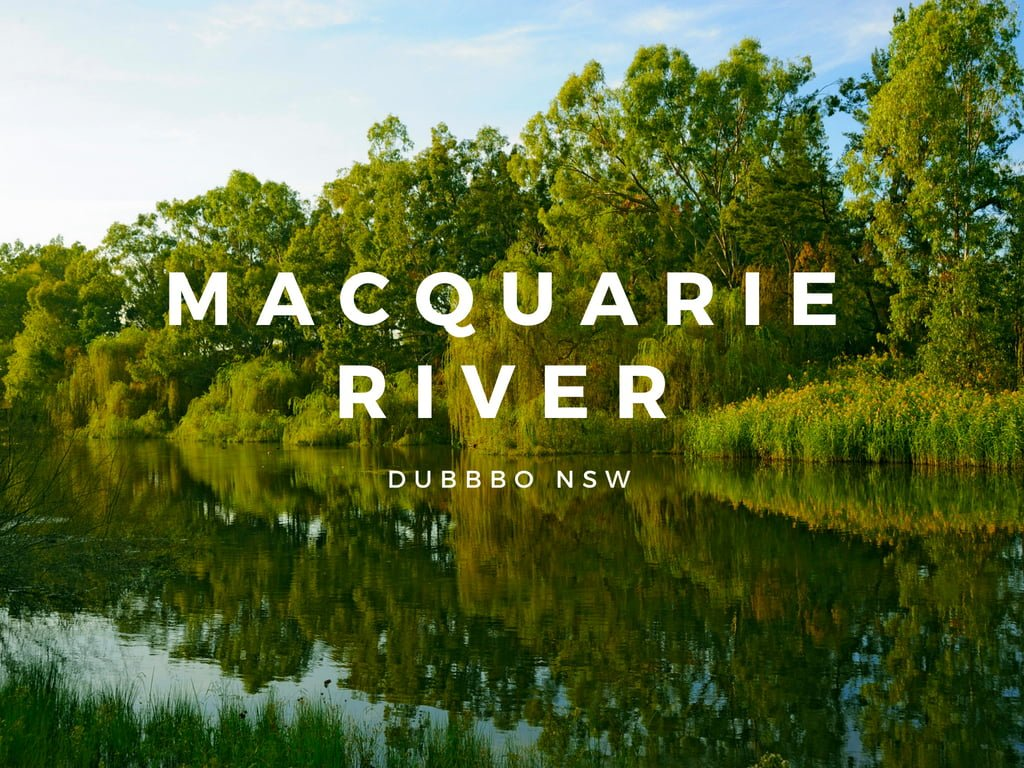 10 Activities for Families Visiting Dubbo -