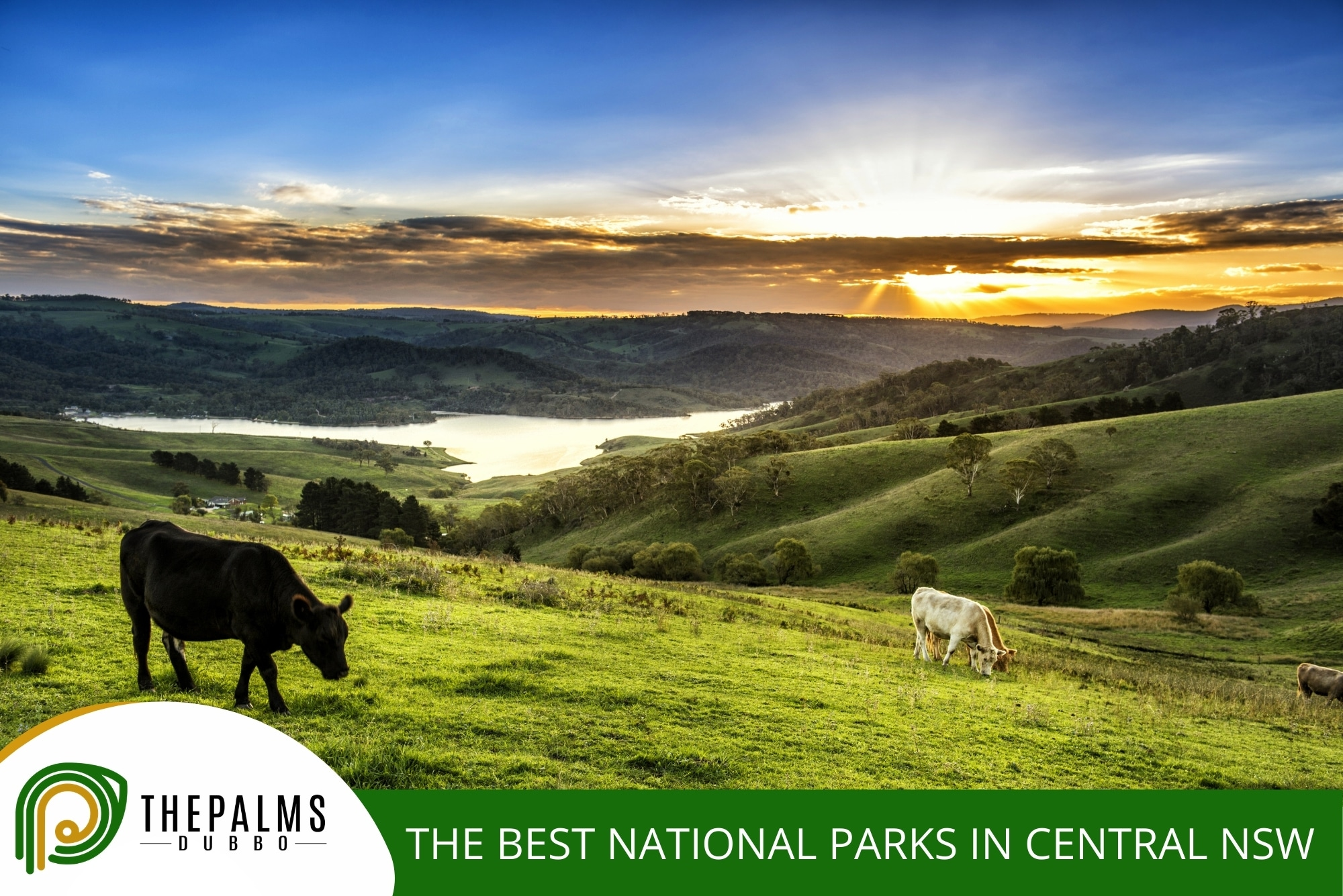 The Best National Parks in Central NSW