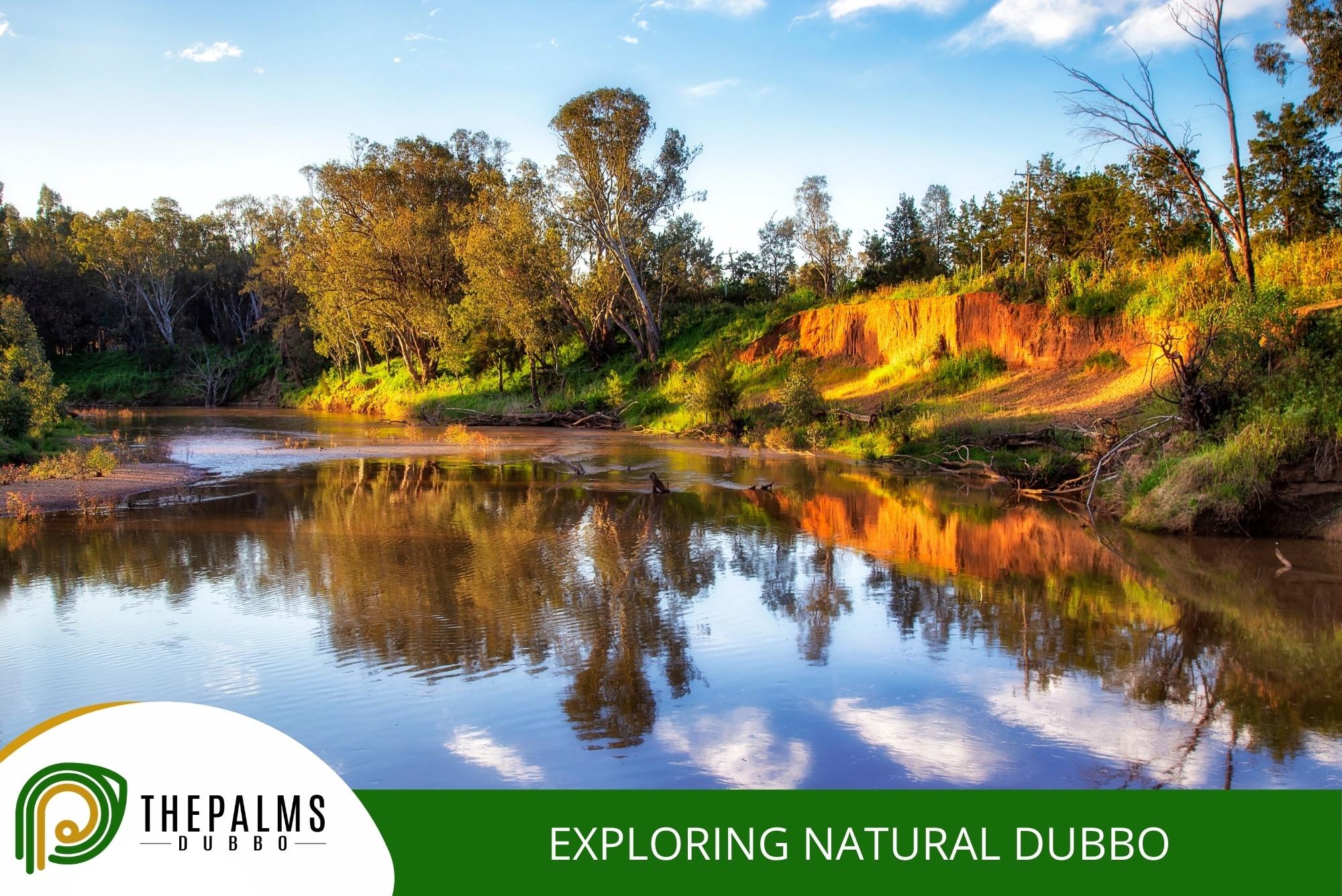 Exploring Natural Dubbo