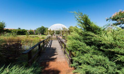 Shoyoen,Japanese,Garden,,Japanese,Gardens,In,Dubbo,,Australia.